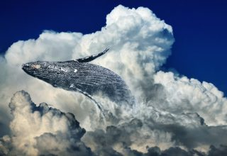 Anonymous Bitcoin Whale Injects $1 Million into Blockchain Fund