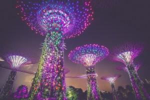 Singapore Grads to Get Certs on Blockchain