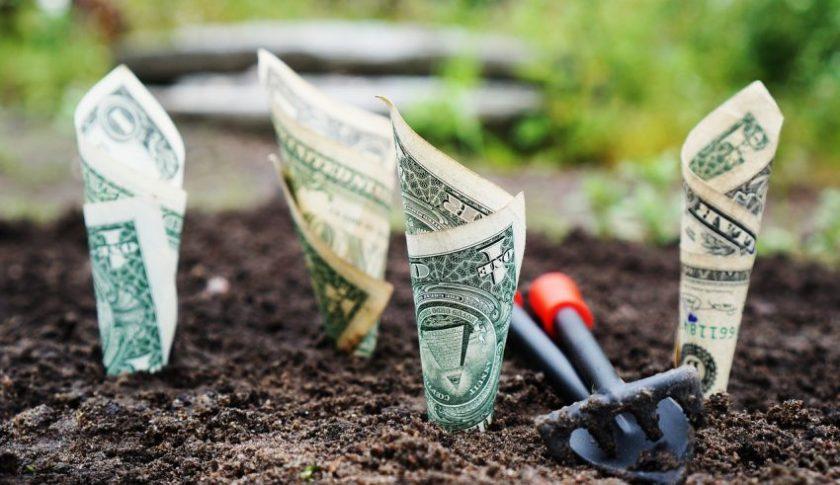Bitcoin Wonderchild Launches Crypto Investment App