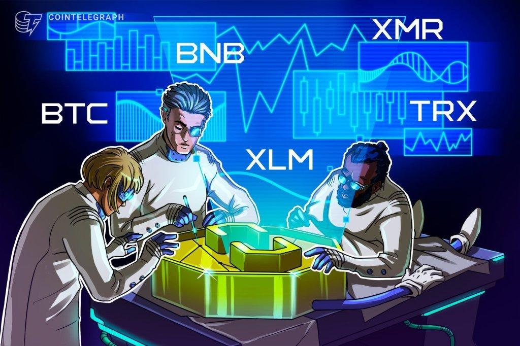 Top 5 Cryptocurrencies to Watch This Week: BTC, BNB, XLM, XMR, TRX