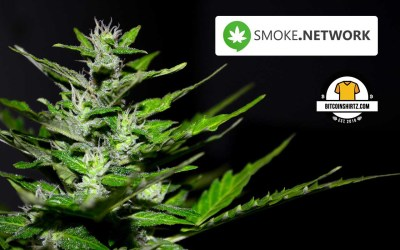 Smoke Network Blockchain Successfully Launched