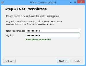 step2, pick a password for authorising send transactions