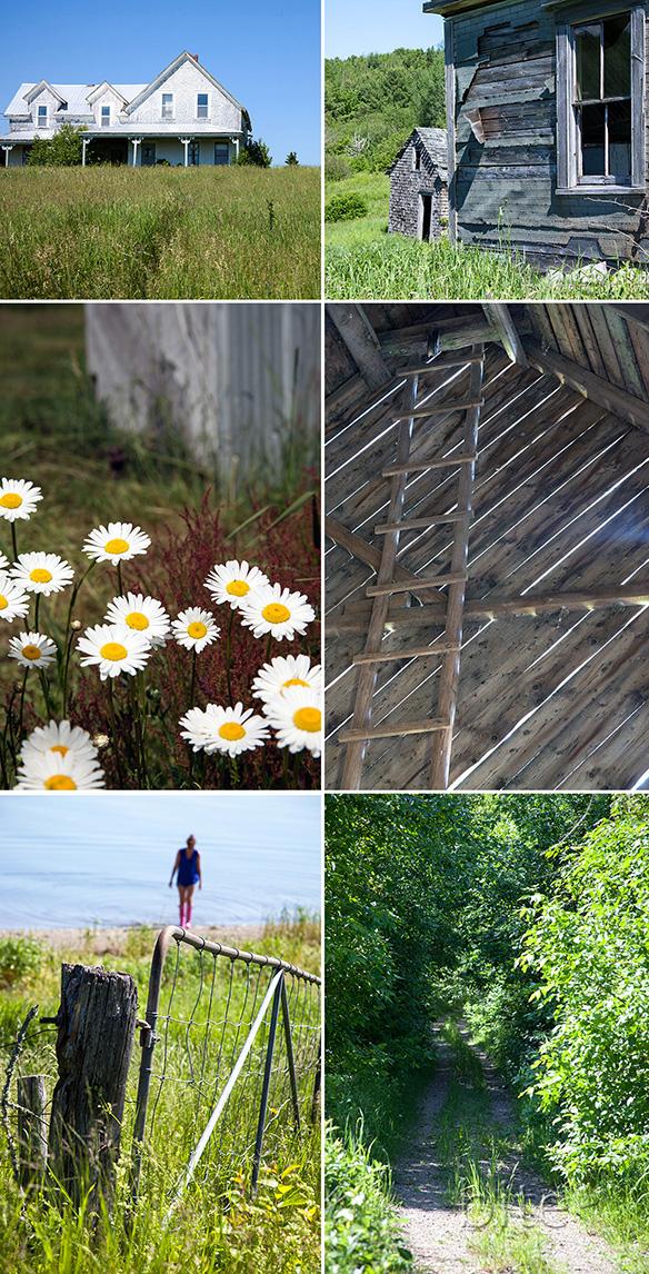 Summer 2013 / www.bitebymichelle.com