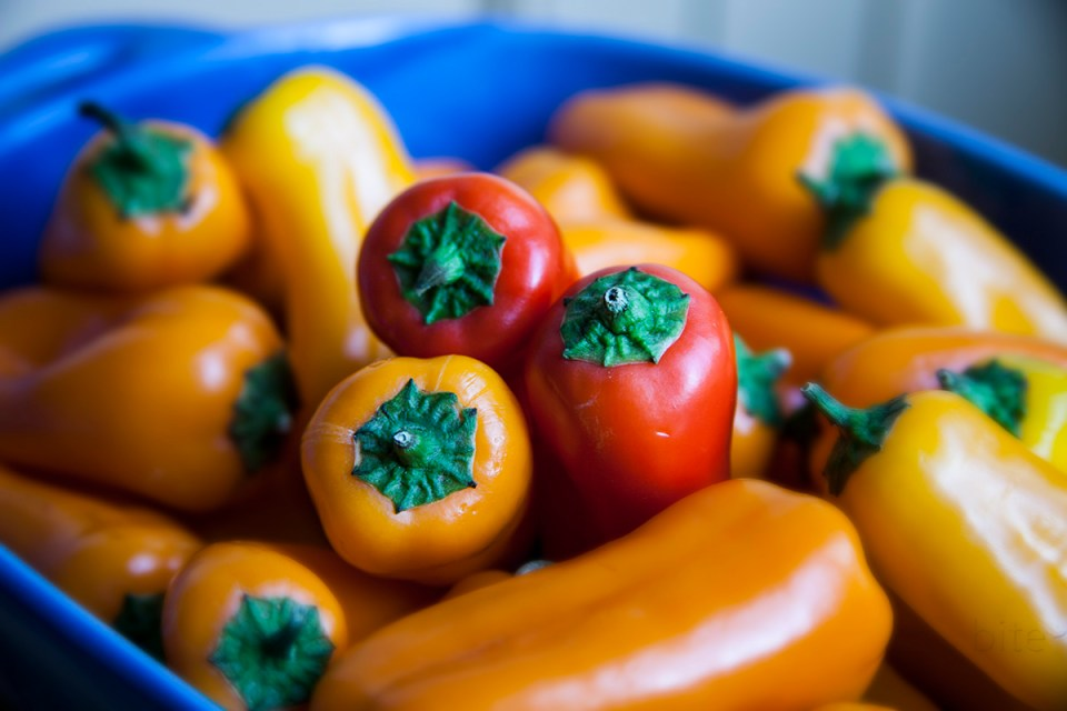 Tri-Colored Peppers