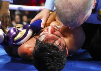 Vasiliy_Lomachenko_vs_Anthony_Crolla_knockout