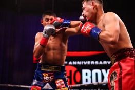 SHObox - Bocachica v Reyes Jr - Fight Night - WESTCOTT-012