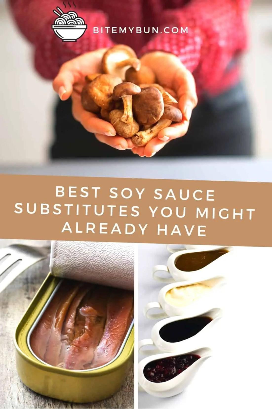 Par Quoi Remplacer La Sauce Soja : remplacer, sauce, Meilleurs, Substituts, Sauce, Pourriez, Déjà, Avoir