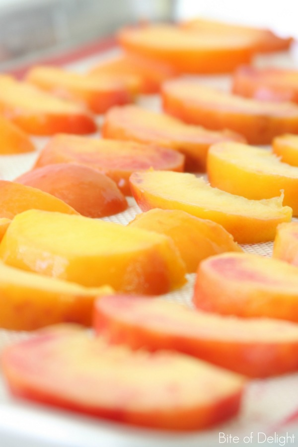 Peach Slushies are a delicious summertime treat! Simple, wholesome, and only 2 ingredients...plus NO added sugar!
