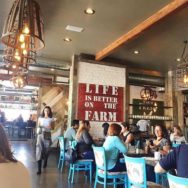 Farm to Table Restaurants in San Diego  BITE San Diego