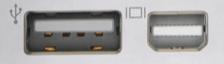 standard USB port next to Mini-DisplayPort