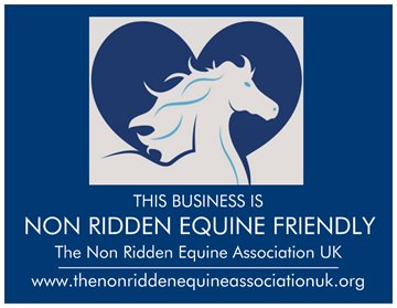 Non Ridden Equine Friendly Business logo