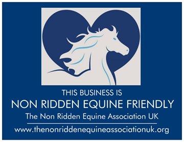 non-ridden equine friendly business logo