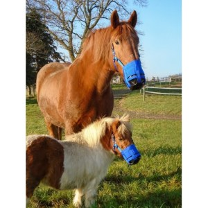 ultimate grazing muzzle, mini to X Full Bitless Equestrian