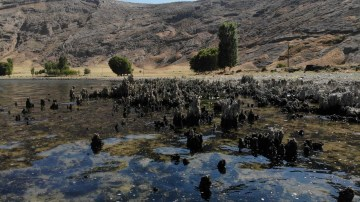 (Özel) Van Gölü'nün suyu çekildi binlerce yıllık mikrobiyalitler gün yüzüne çıktı