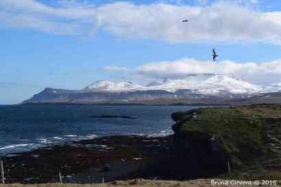 Iceland137