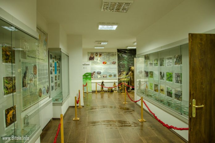 pelister info center 04 - exhibiton room