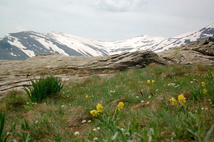 Kopanki – Jorgov Kamen – Hiking on Pelister