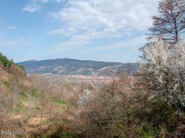 Sv Ilija Lavci, Bitola