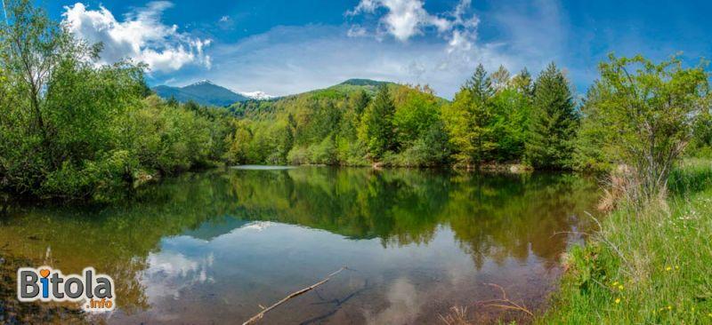 Ротинско езеро