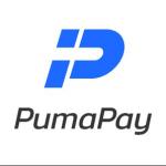 プーマペイ 「Pumapay」上場 後に価格 チャートが下落しすぎ。。購入者は悶絶。