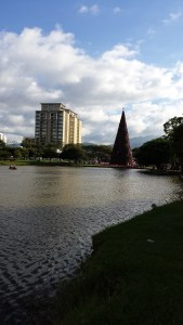 looking across the park and the lake to a tall white building and a Christmas tree.