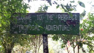 "old battered sign that reads ""Welcome to the perfect tropical adventure"""