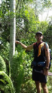 Waramu tree - the guide to the right is pointing at the rings on a tree which has a slim straight trunk
