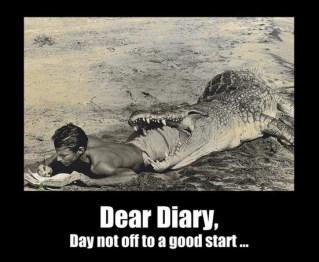 Image result for dear diary funny