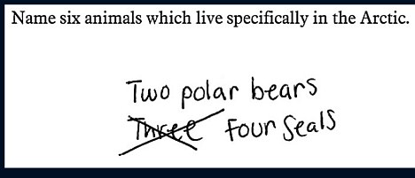 Six arctic animals