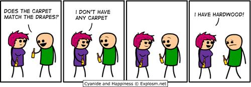 Carpet and drapes