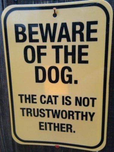Bewafe of dog