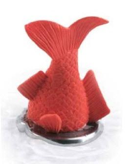 Fish drain stopper