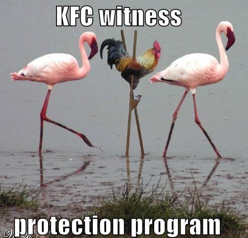 Kfc witness protection
