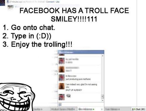 Facebook troll