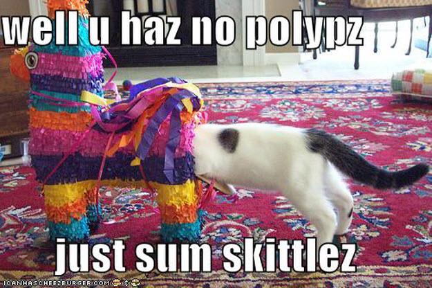 No polyps