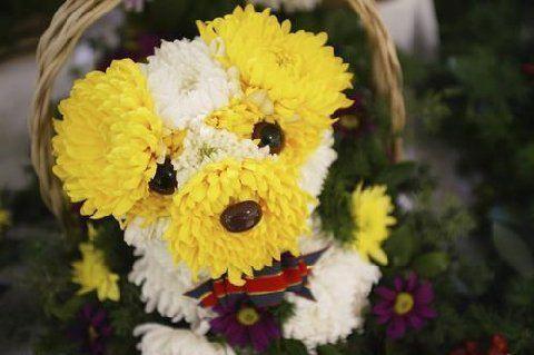 Puppy bouquet2