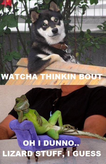 Whatcha thinkin about2