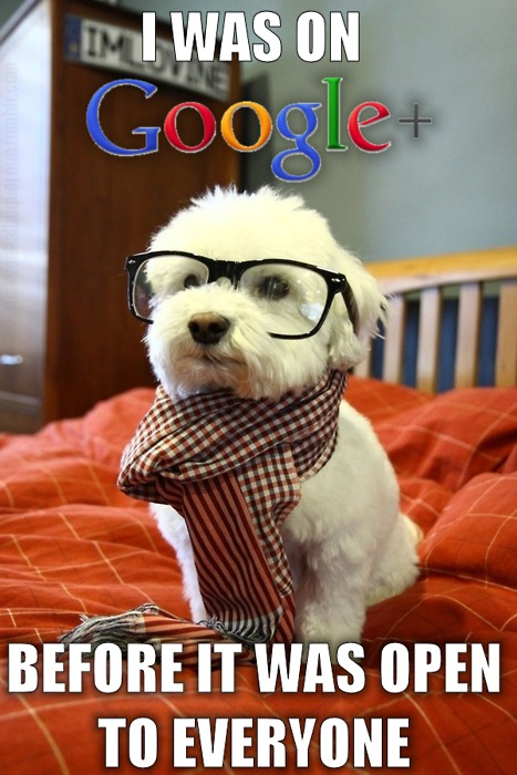 I was on google +