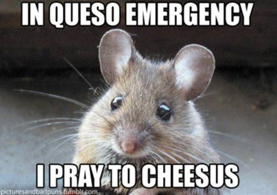 Pray to cheesus