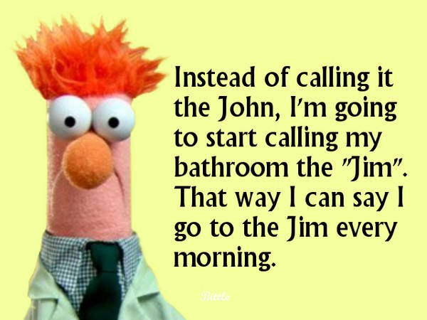 The jim