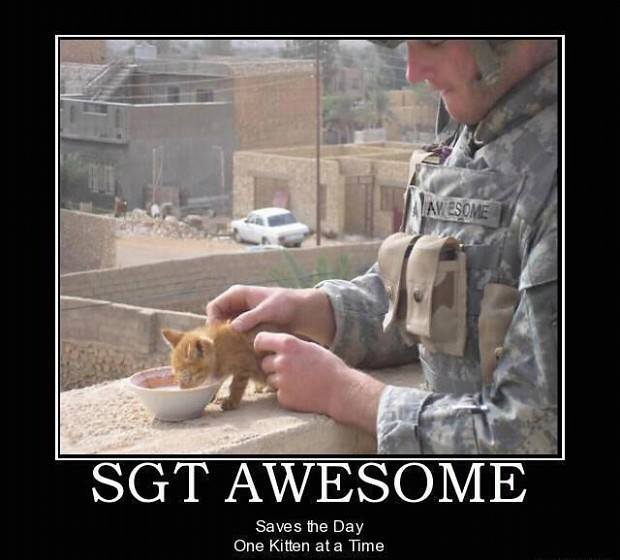 Sgt awesome
