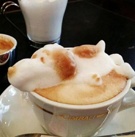 Coffee art 2.0