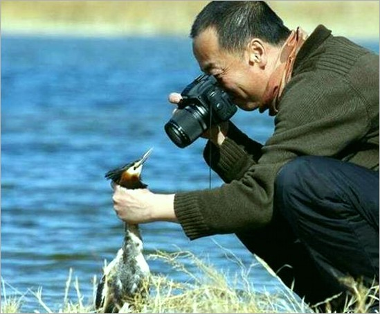 Don't move, it's for National Geographic