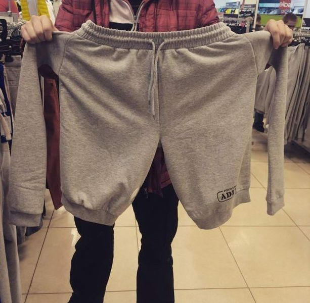 The shorts which wanted to be a sweater