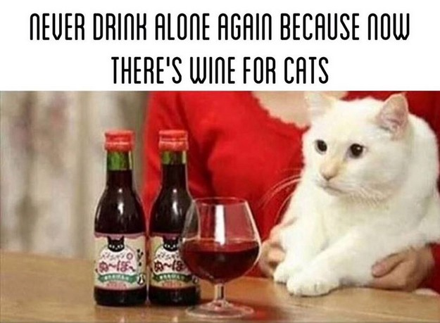 Never drink alone again