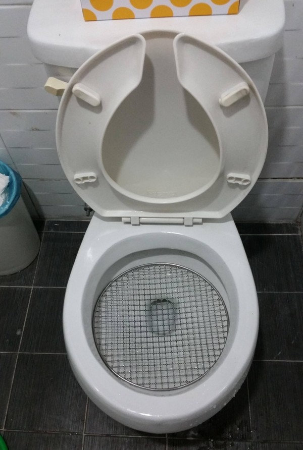 Toilet screen