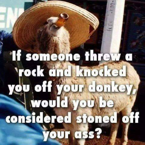 Stoned off your ass