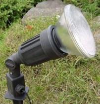 A PAR38 light
