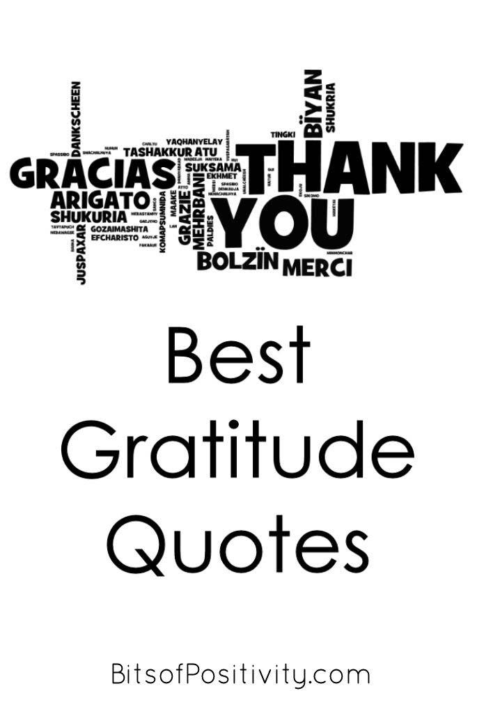 Best Gratitude Quotes