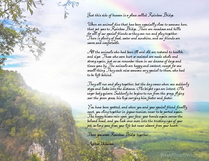Rainbow Bridge Free Printable Poem Pet Loss
